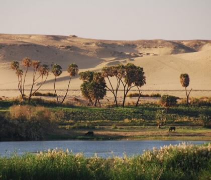 Webinar: Water Security in the Middle East