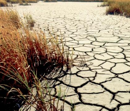 Early warning tool for global water conflict