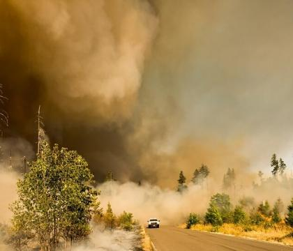 Security Implications of the US Wildfires
