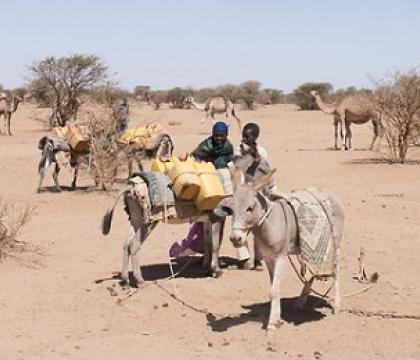 Adaptation Recommendations for Climate Induced Displacement in Somalia