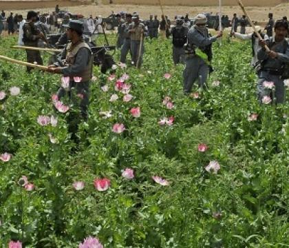 Can the Taliban address climate-related risks in Afghanistan?